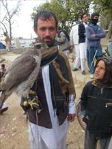 Falconry Images from Afghanistan by Kamran Khan Part 2