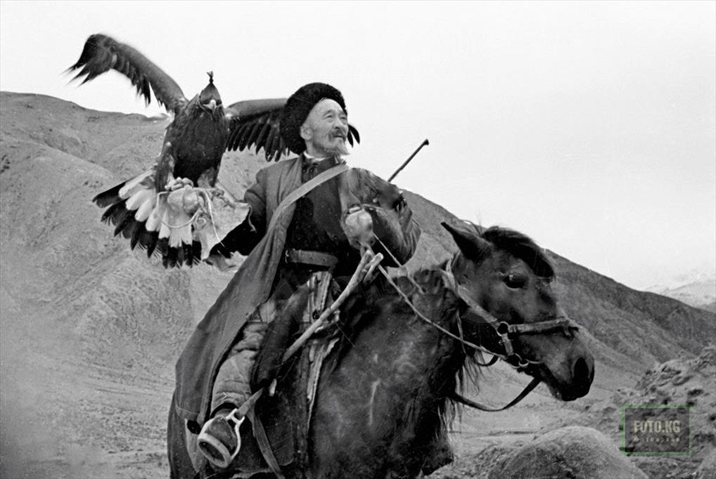 Kirghiz hunter with tame Golden Eagle 23-08-1958