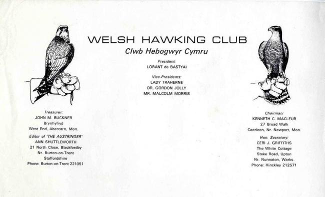 An old form of Welsh Hawking Club