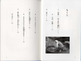 Book on falconry by Misato Ishibashi in Japanese - table of contents