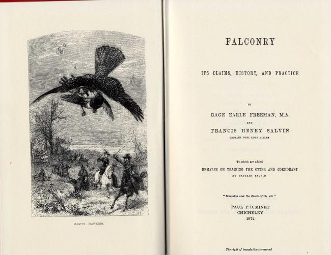 Falconry its claims, history, and practice by G.E.Freeman and F.H.Salvin