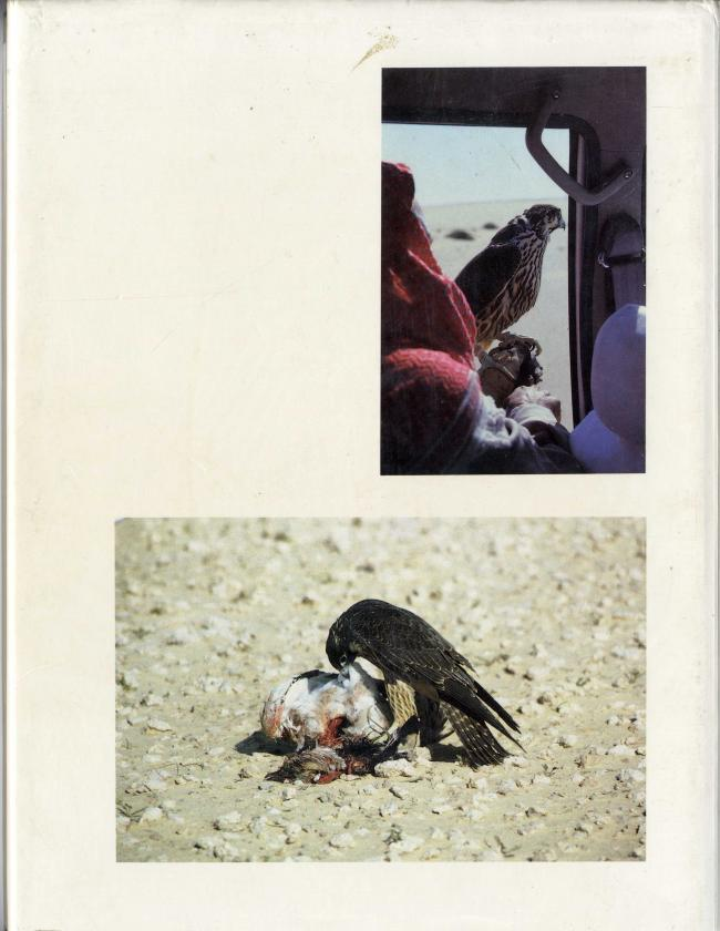 Falcons and Falconry in Qatar by Faris A. Al-Timimi BC