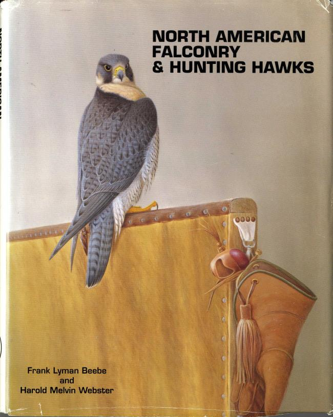 North American Falconry & Hunting Hawks by Frank Beebe and Harold Webster FC