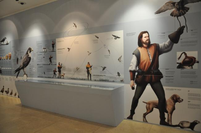 The Art of falconry from East to West - temporary exhibition at Museu do Oriente 1