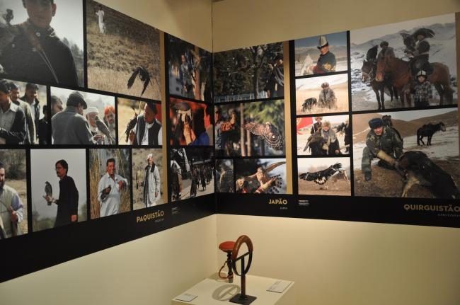 The Art of falconry from East to West - temporary exhibition at Museu do Oriente 4