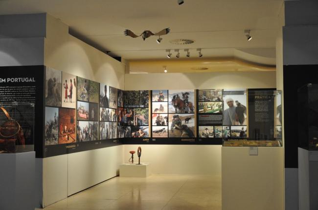 The Art of falconry from East to West - temporary exhibition at Museu do Oriente 3